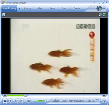 Domador de Peixes!!!
