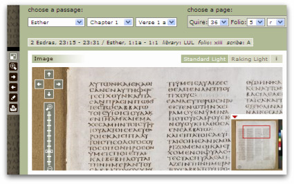 codex_02