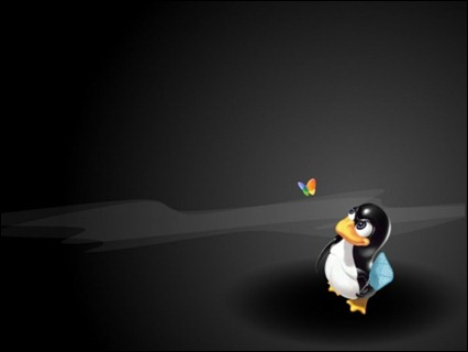linux-wallpapers-3-500x375