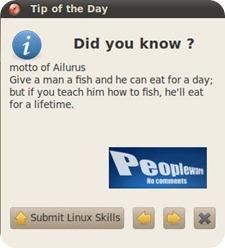 ailurus1