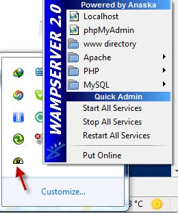 wamp server 2.01