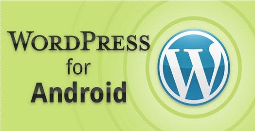 wordpress_00