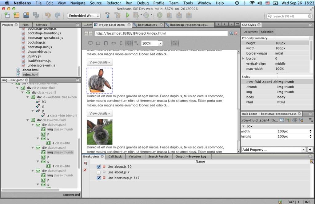 Netbeans 7 3, uma das melhores plataformas para programação