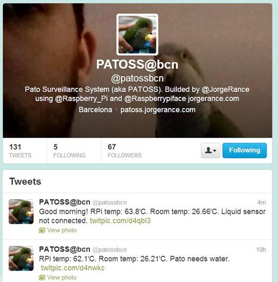 patoos_05