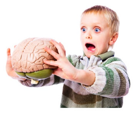 Photo-Kids-Brain