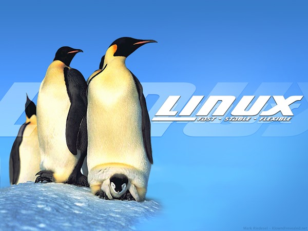 linux-frf_1024x768