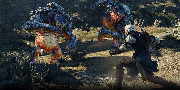 TheWitcher3_2
