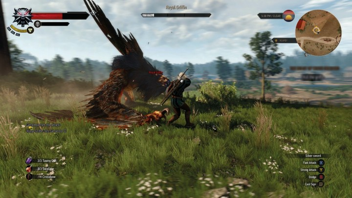 The_Witcher_3_Wild_Hunt_the_deadliest_dance_1430900924