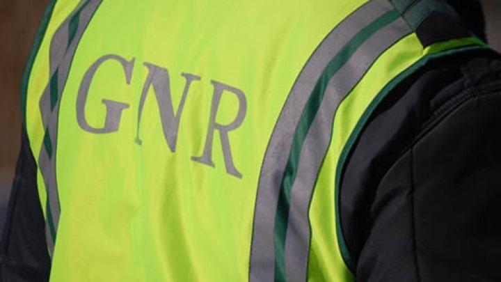 GNR1_0