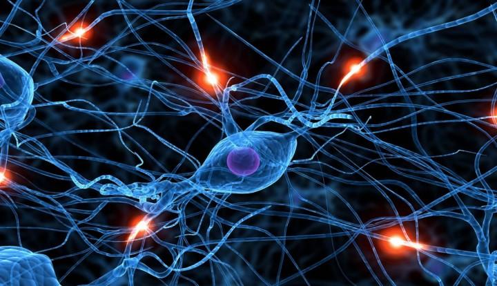 pplware_neuronio_artificial00