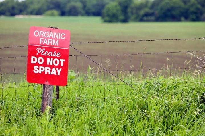 organic-farm
