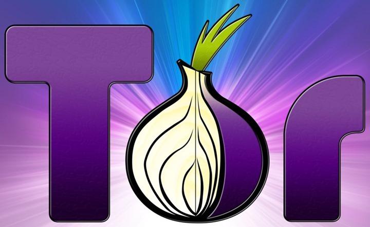 tor_browser_logo_by_j_bob-d5gjqrq