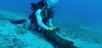 cabos_submarinos