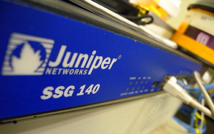 juniper_1