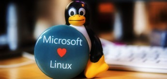 ms_linux_1