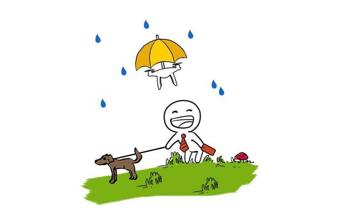 Drone umbrella 1