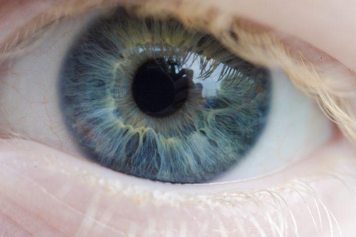 Em cada retina há cerca de 120 milhões de foto-receptores responsáveis pela visão