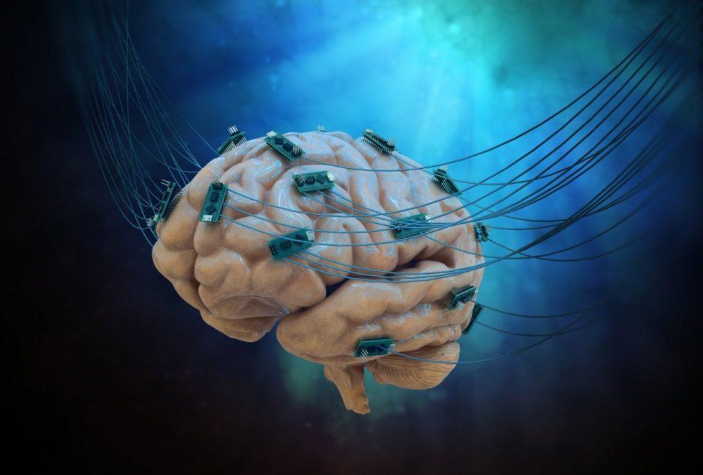 Representação ilustrativa do Brainternet