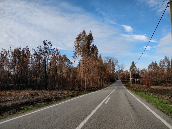 OnePlus 5 - foto camara 04