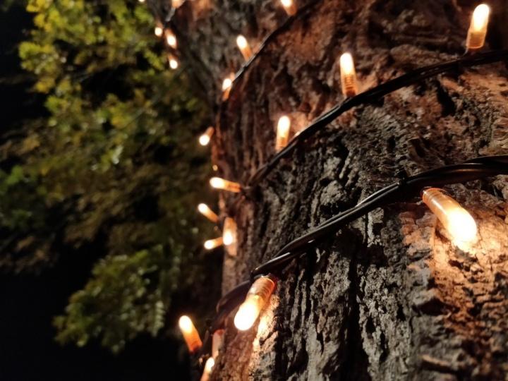 OnePlus 5 - foto camara 17
