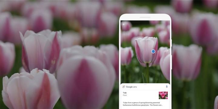 Google Lens: O seu iPhone sabe tudo o você quiser saber