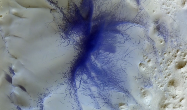 Imagem de Marte tirada pela missão ExoMars