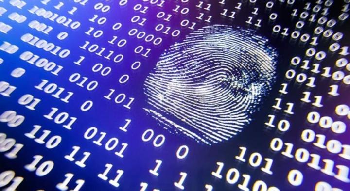 """Cibersegurança: """"Posso deitar abaixo o Governo em 15 dias"""", alerta professor do IST"""