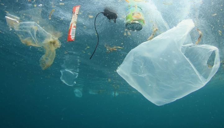 Micróbios que comem plástico poderão ser solução para poluição dos oceanos