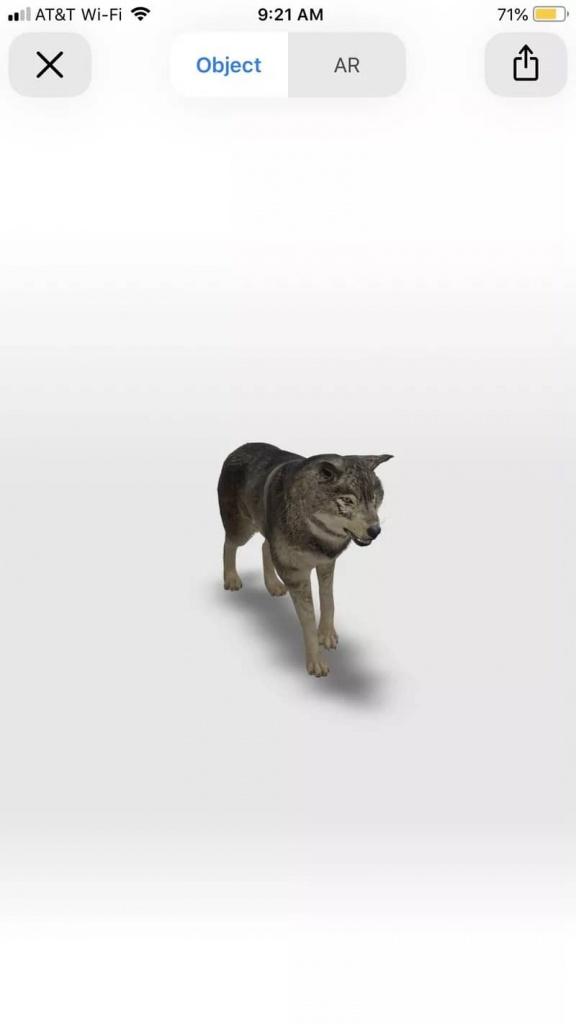 Google pesquisa AR realidade aumentada animais