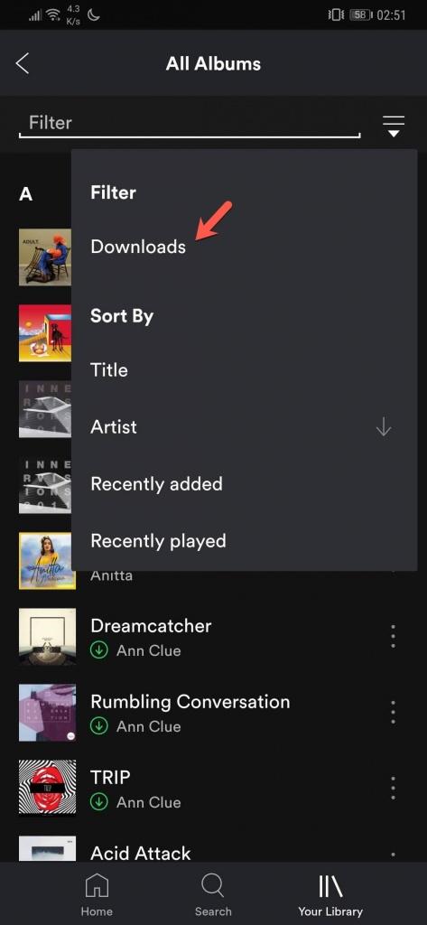 offline Spotify músicas descarregou filtrar