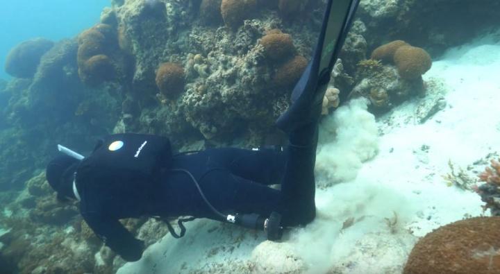SubCruiser - a scooter submarina que lhe permitirá nadar a 7km/h