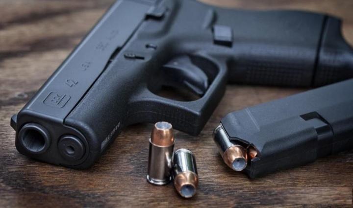 Portugal: Tem armas de fogo não registadas? Pode entregá-las até 2020