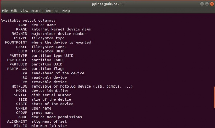 lsblk: Saiba quais os discos e partições no Linux