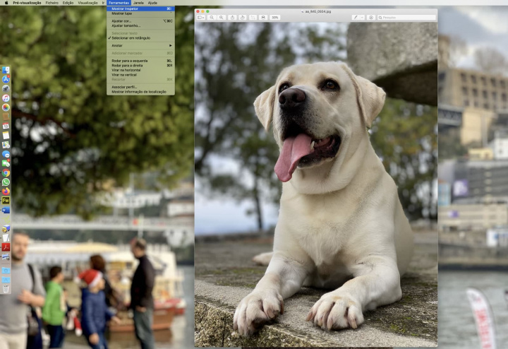Image of where you can use the inspector who will analyze the photo