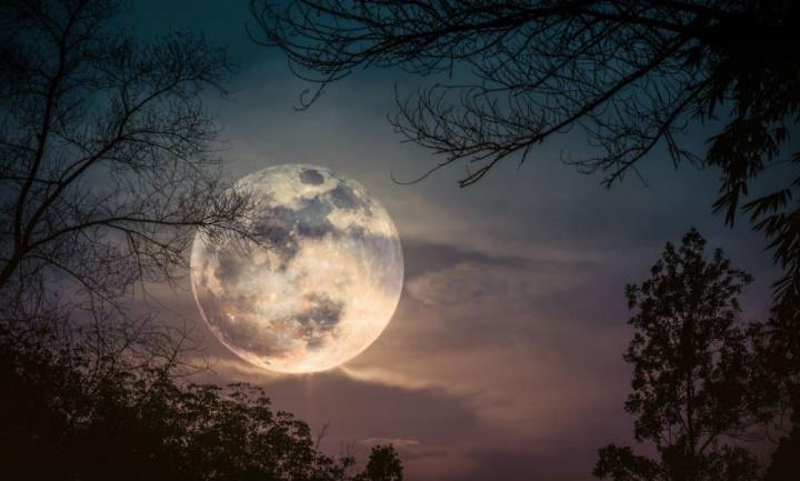 """""""Lua de neve"""": Esteja de olho no céu este fim de semana"""