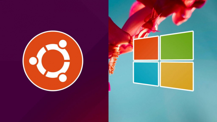 Ubuntu Windows 7 Canonical Windows 10 migrar
