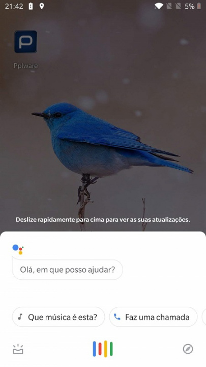 Google Assistant Lavar as maos (1)