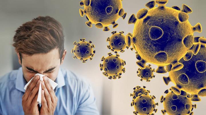 OMS: Novo coronavírus pode não se transmitir através de objetos e superfícies