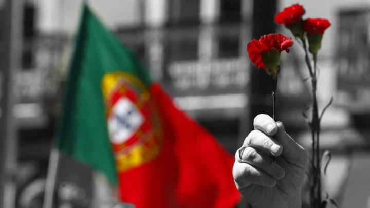 Imagem da bandeira de Portugal e os cravos vermelhos do 25 de abril