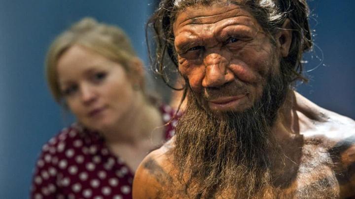 Imagem de neandertais com o o homem por trás, culpado da sua extinção