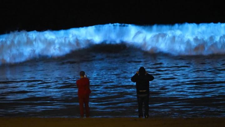 Ver de perto estas ondas raras