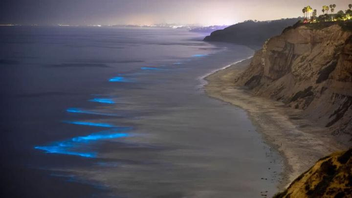 Imagem da costa da Califórnia com Ondas bioluminescentes