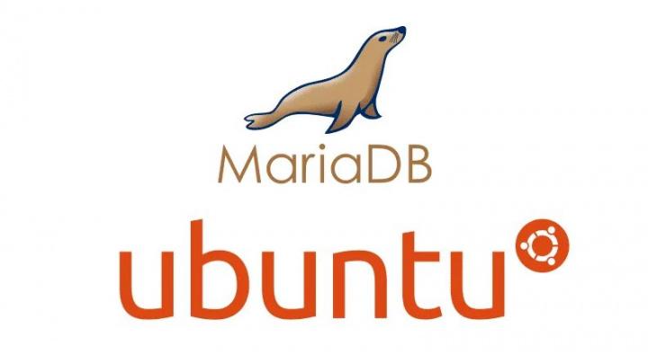Ubuntu 20.04 LTS: Aprenda a instalar o gestor de base de dados MariaDB