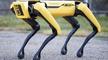 Imagem robô Spot da Bonton Dynamics