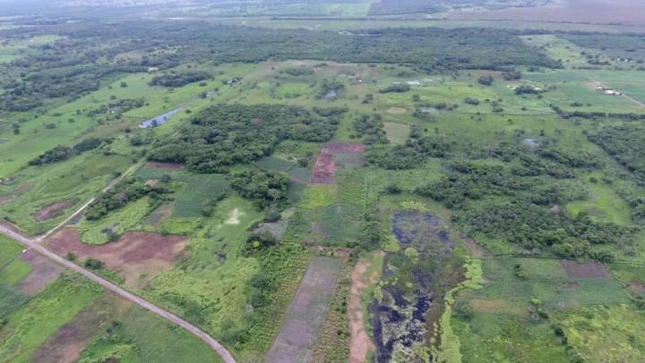 Imagem da selva que esconde monumento maia descoberto com recurso ao LiDAR