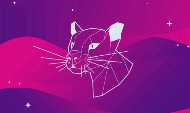 Ubuntu 20.04 instalado? Aprenda a configurar a rede via interface gráfica