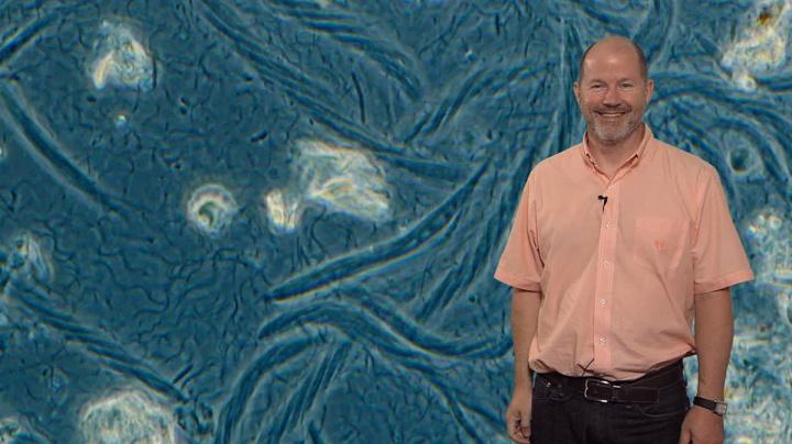 Imagem de Jared Leadbetter, microbiologista da Caltech que descobriu bactéria que come metal