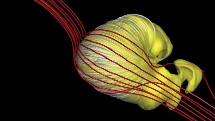 Ilustração da NASA da heliosfera que se parece com um crossaint murcho
