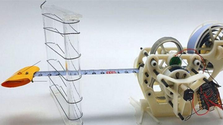 Língua robotizada inspirada em camaleão executa movimentos a uma velocidade sónica