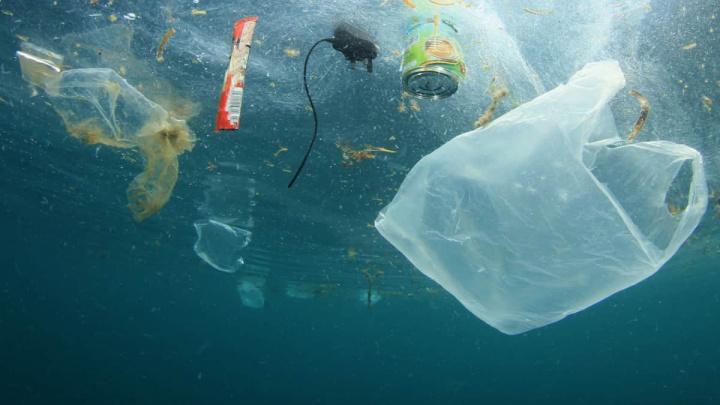 Plástico quase impercetível detetado em tecidos humanos